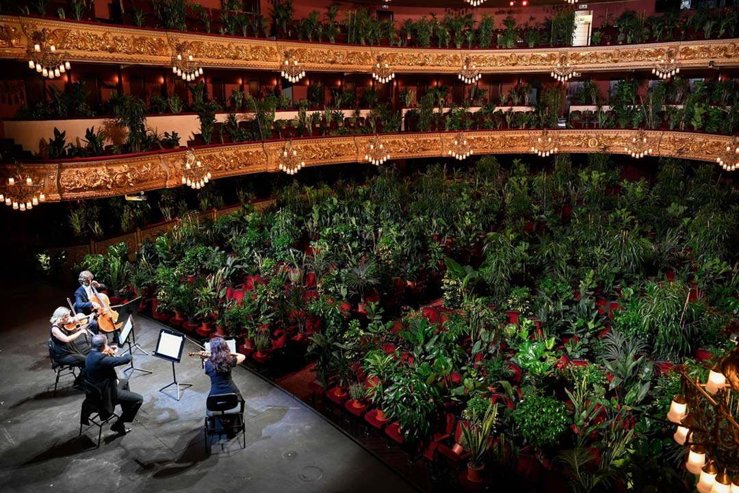 Barcelona Opera House Performed a Concert for 2,292 Plants